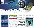 Marine Turtle & Climate Change Program in LAC - a Proactive Stance from Science to Action