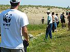 People clean a beach in Strandzha Nature Park in Bulgaria as part of WWF's National Day of the ...  	© WWF DCP BG Archive