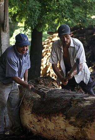 Trunks being processed at La Chonta timber company (member of Bolivia FTN - Forest and Trade ... / ©: WWF-Canon / Andrés UNTERLADSTAETTER