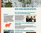 July-August 2015 Newsletter - Living Amazon Initiative