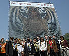Members of the  International Tiger Coalition stand in front of the mosaic