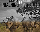 Zeropoaching.org contains best available resources to tackle poaching crisis