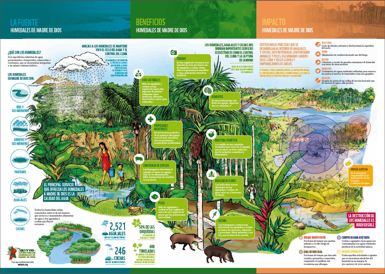 Reporte: Humedales de Madre de Dios   WWF
