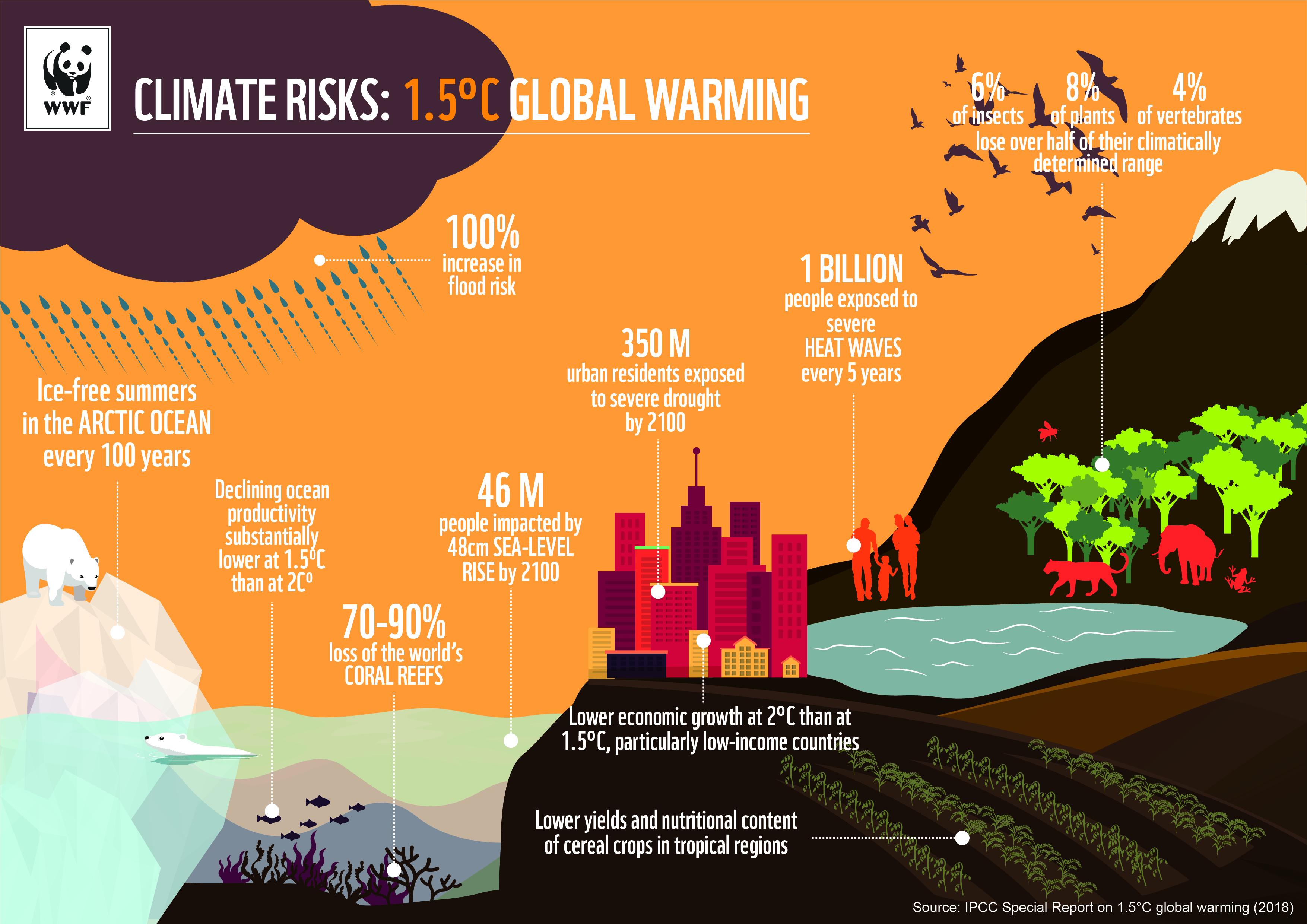 COP 24 | WWF