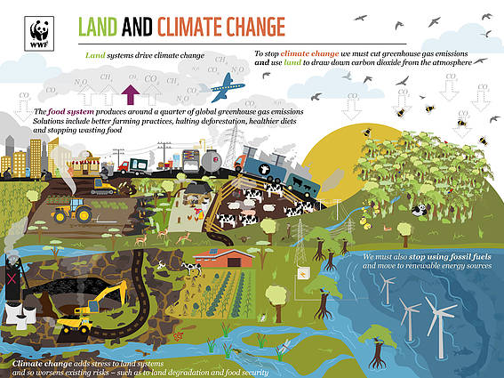 Land and Climate Change