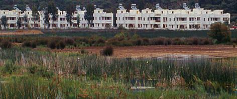 Tourist resort on a very fertile swamp. Fethiyé, Turkey  rel=
