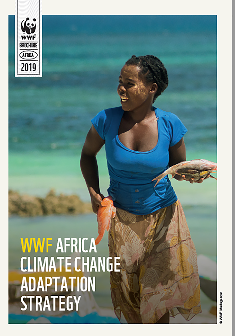 WWF AFRICA CLIMATE CHANGE ADAPTATION STRATEGY