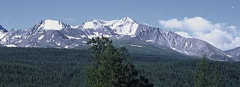 altai sayan mountains wwf