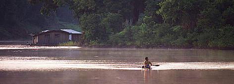 The Amazon River | WWF