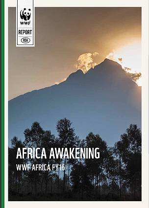 Africa awakening – WWF's achievements in Africa in 2015/2016