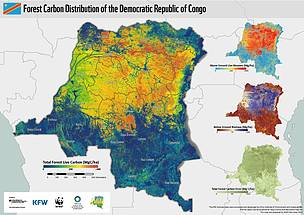 A National Forest Carbon Map for the DRC | WWF