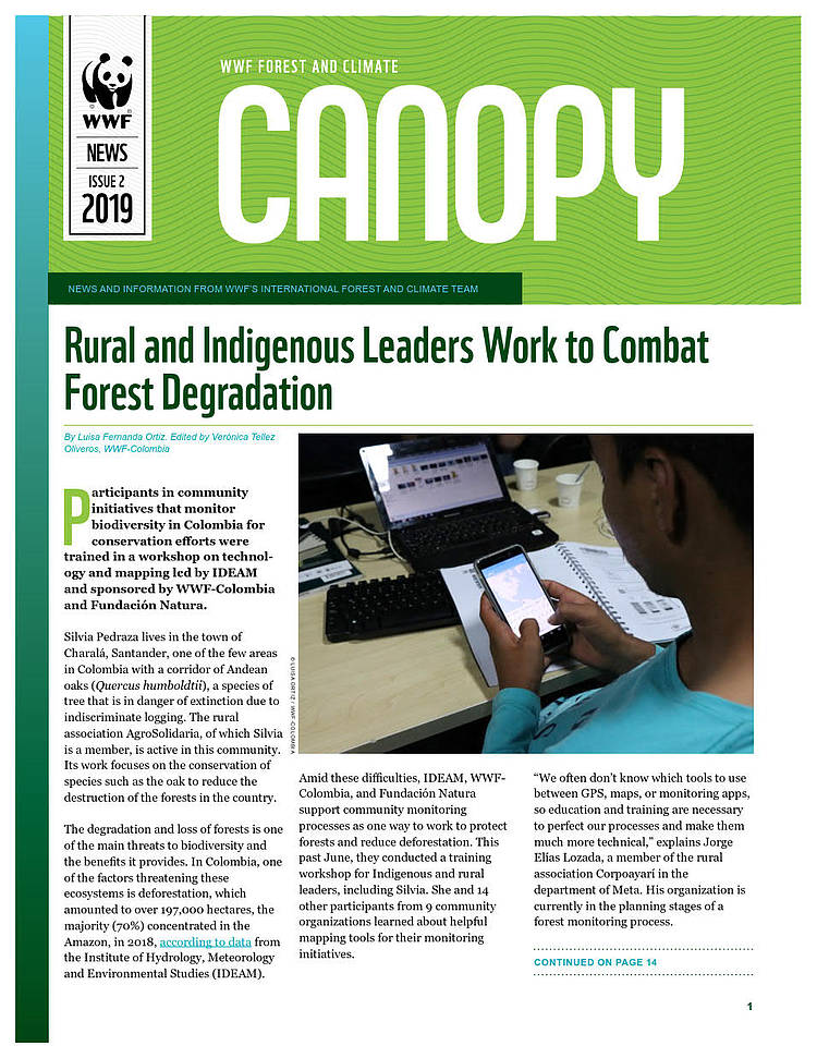CANOPY (issue 2, 2019): biannual news from WWF Forest and Climate