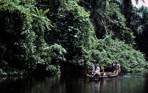 Swamps and flooded forests | WWF | 472 x 299 jpeg 45kB
