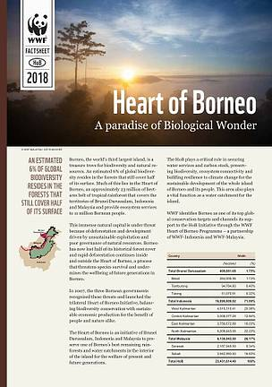 Heart of Borneo, a Paradise of Biological Wonder