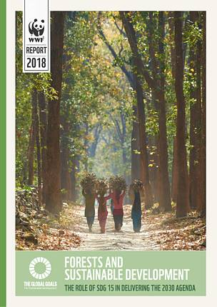 Forests and Sustainable Development: The role of SDG 15 in delivering the 2030 Agenda