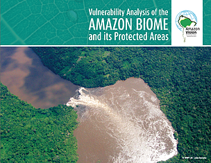 Vulnerability Analysis of the Amazon Biome and its Protected Areas