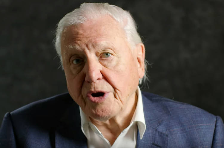 Sir David Attenborough's message to world leaders