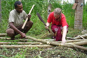 Cutting wood for reforestation of the Vesi tree in Kabara