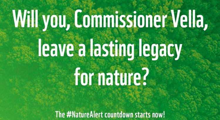 NGOs tell EU environment chief, 'it's the final countdown' for nature