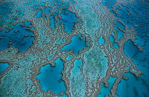 Plan to protect the Great Barrier Reef recognized as a Gift to the Earth