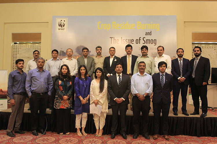 WWF-Pakistan organizes seminar on crop residue burning