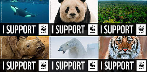 I support WWF rel=