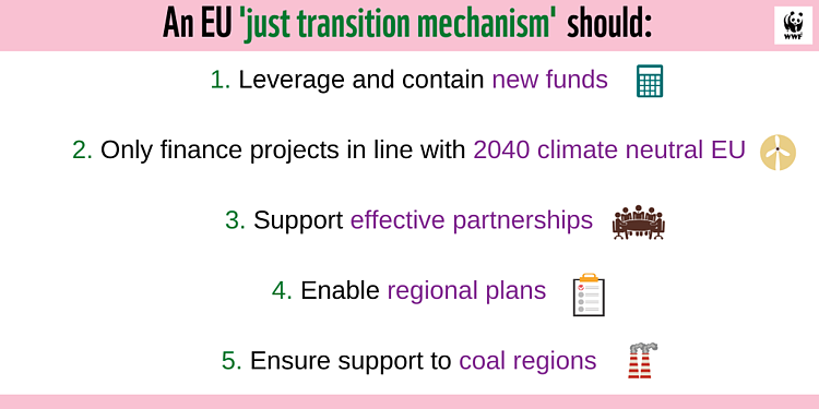 EU's chance to help a fair move to climate neutrality