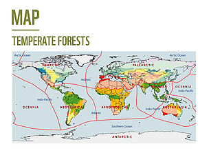 Temperate Rainforest World Map.Temperate Rainforest Map Us Canada Www Healthgain Store