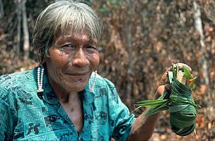 Mujer de comunidad Kayapo sosteniendo una planta medicinal.