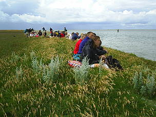 Nature guided tour along Danish Baltic Sea coast