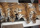 Tiger skins seized by Nepalese police