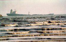 Karachi: oil spill catastrophe | WWF