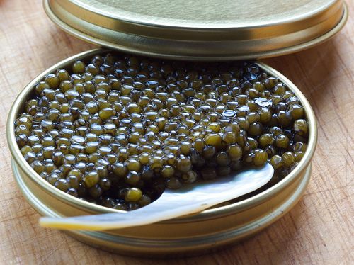 Caviar from endangered sturgeon not suitable for Christmas ...