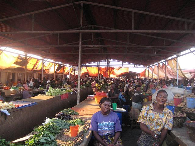 Lubumbashi urban farming   WWF