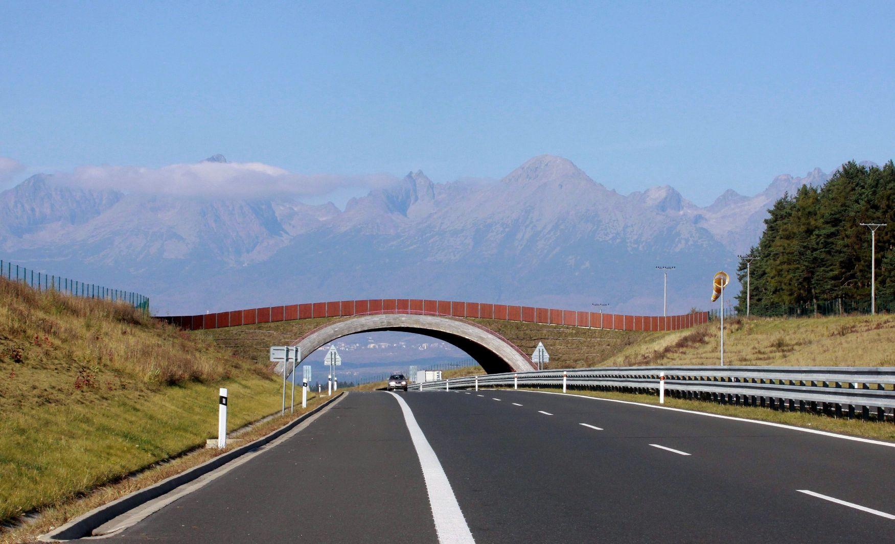 Ekodukt Mangušovce, D1, Foto Václav Hlaváč