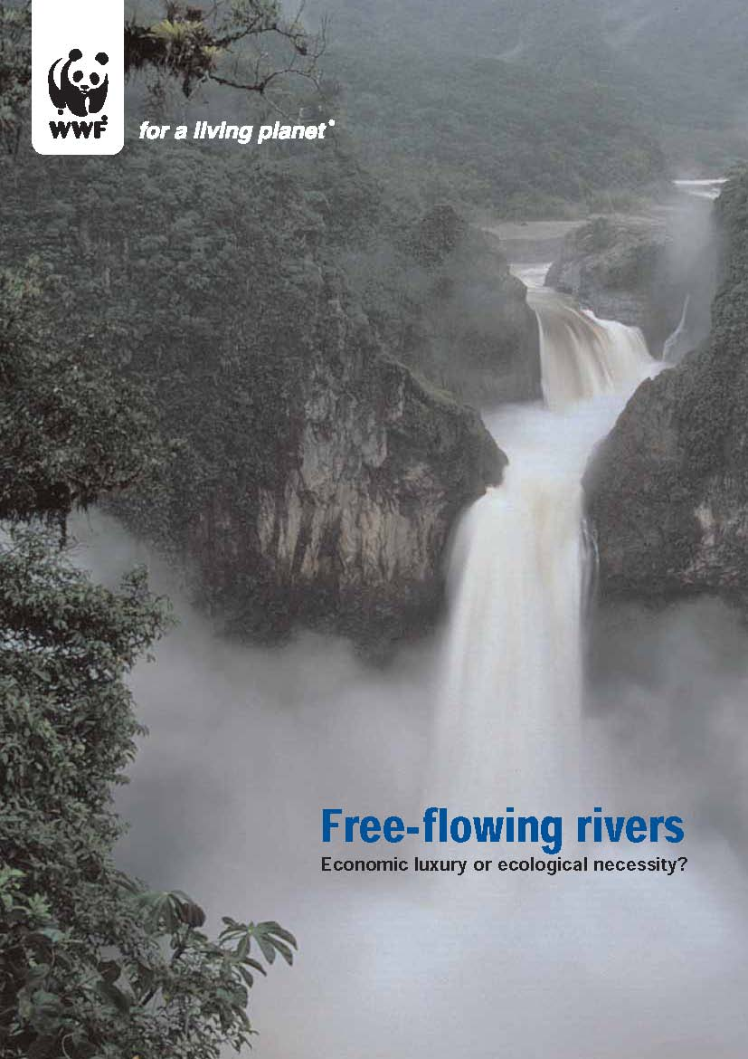 Free-flowing rivers report cover