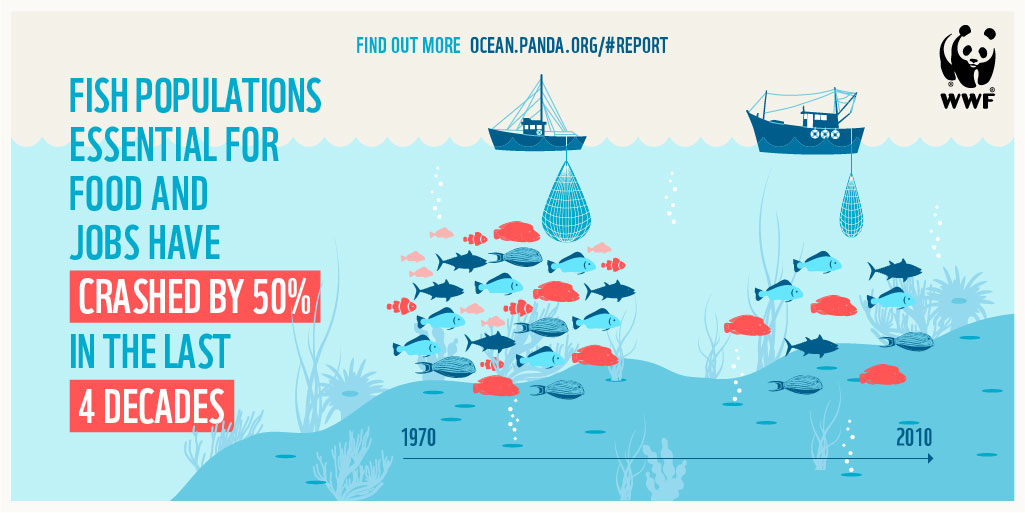 How the world's oceans could be running out of fish