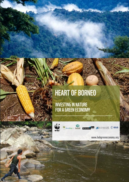 Heart of Borneo: Investing in Nature. HoBGI