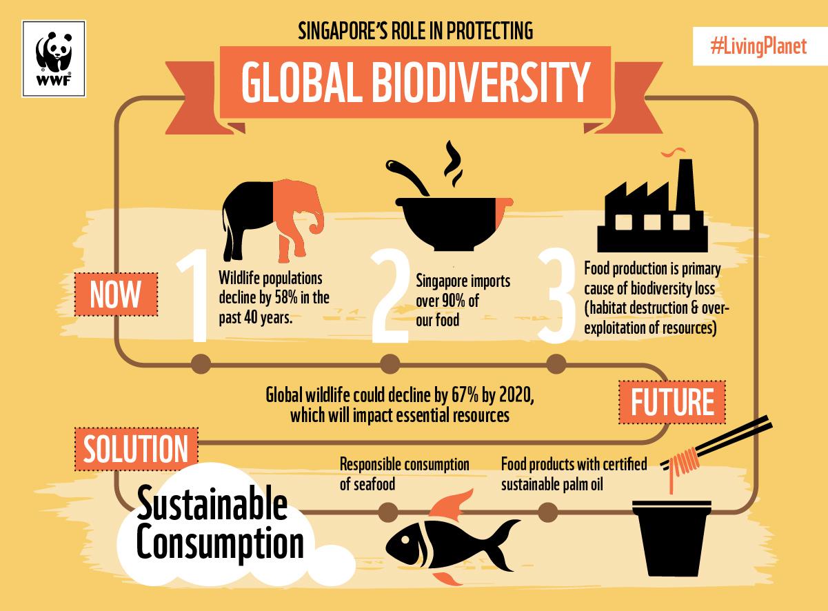 Biodiversity conservation in Singapore
