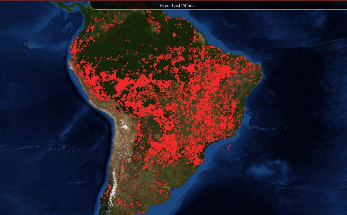 La Amazonia y otros bosques de Suram&Number 233 rica siguen en llamas