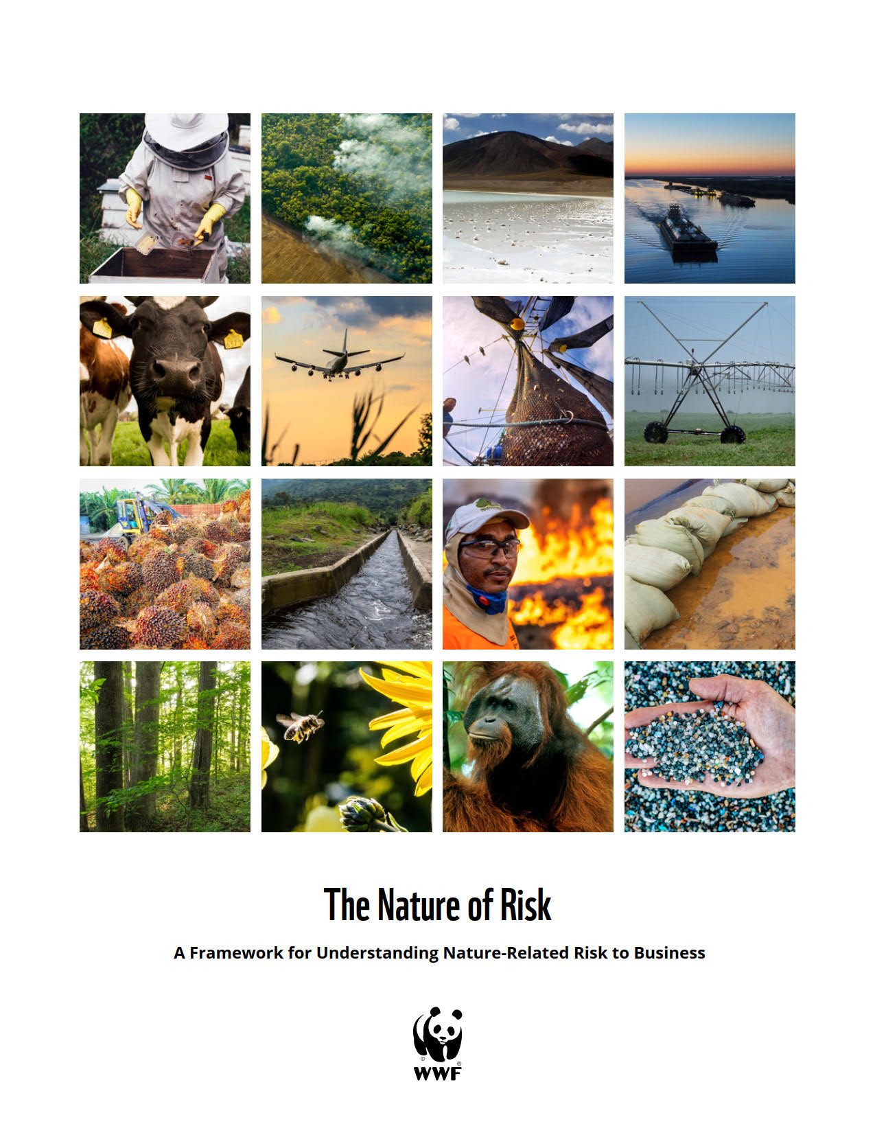 The Nature of Risk