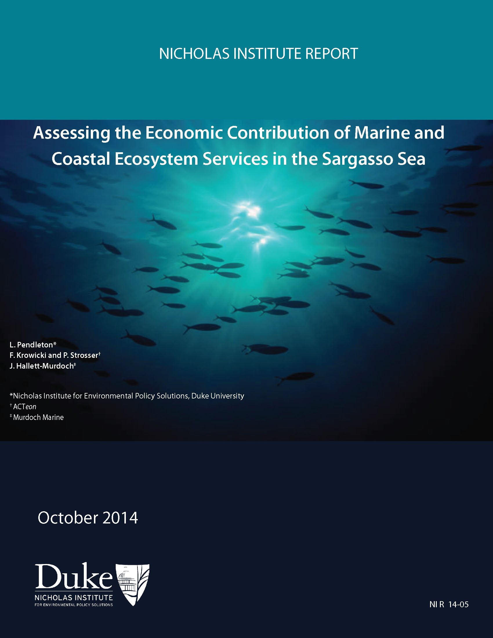 Sargasso Sea On World Map.Study Economic Valuation Of The Ecosystem Services Of The Sargasso