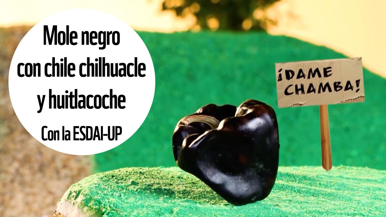 Mole negro con chile chilhuacle