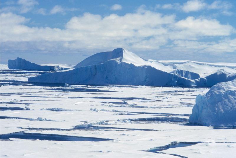 Increased Protection Of Polar Bear Habitat
