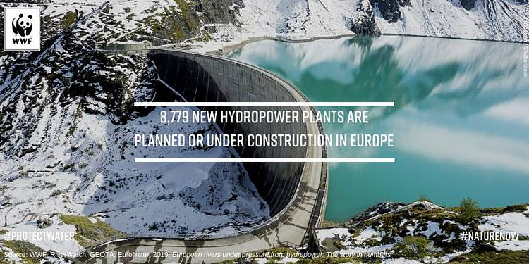 8,700+ New Hydropower Plants Threatening Europe's Fragile Freshwater Biodiversity