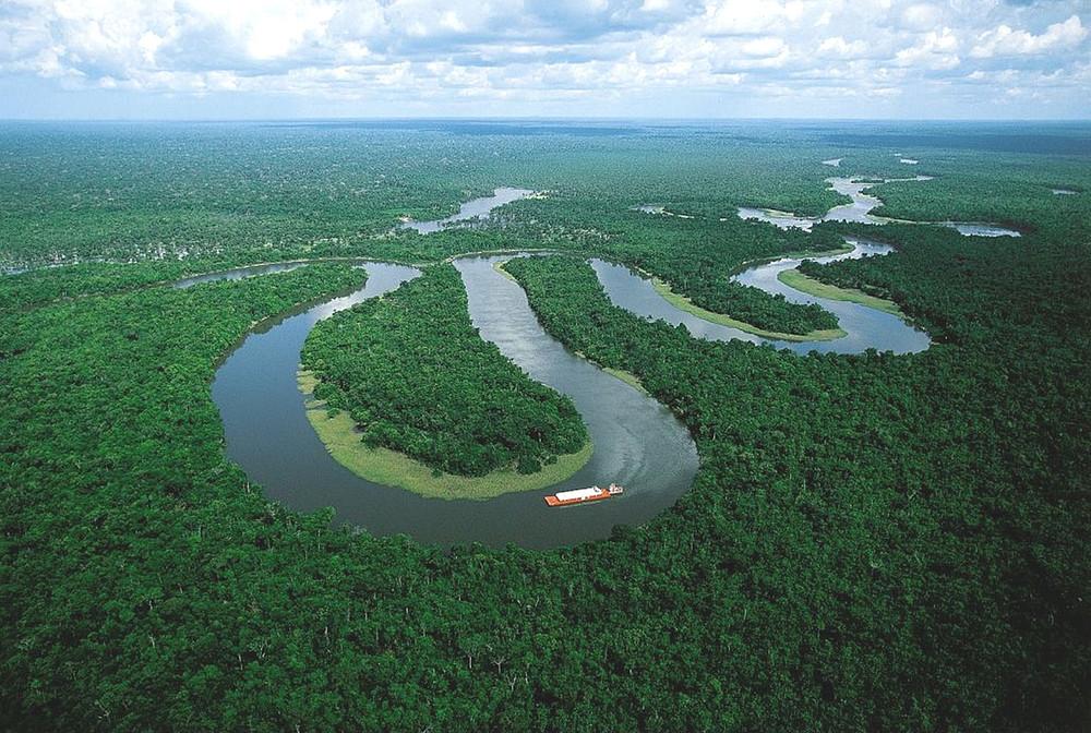 Las seis grandes amenazas del Amazonas | WWF