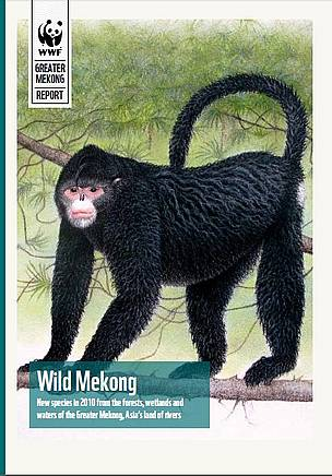 Wild Mekong: New species in 2010 from the forests, wetlands and waters of the Greater Mekong, Asia's land of rivers