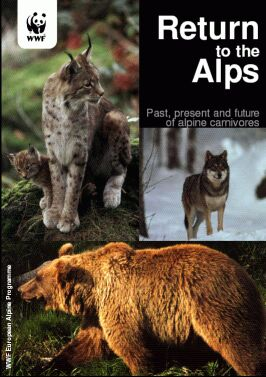 Report on the conservation status of alpine predators