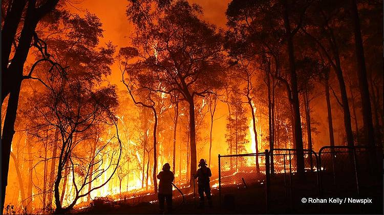 Our world is on fire - and business must help put it out