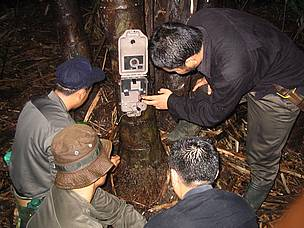 A camera trap is set up      ©  Sameer Singh/WWF AREAS